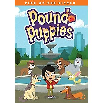 Pound Puppies: Pick of the Litter [DVD] USA import