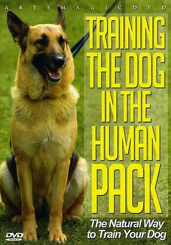 Training the Dog in the Human Pack [DVD] USA import
