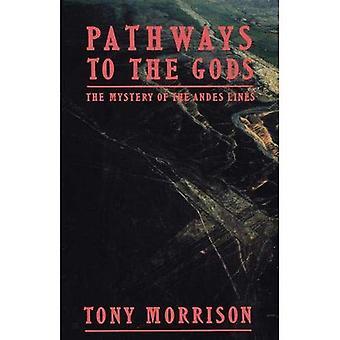 Drogi do bogów: Tajemnica Andach linii