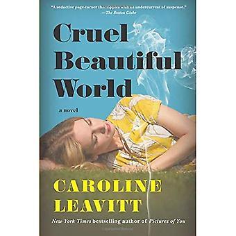 Wrede mooie wereld: Een roman