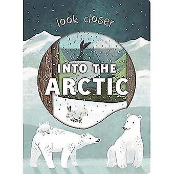 I Arktis: titta närmare (titta närmare) [styrelse bok]