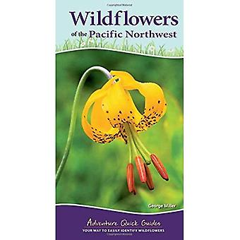 Wildflowers of the Pacific Northwest (Adventure Quick Guides)