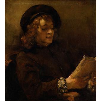 Titus Reading, Rembrandt, 50x45cm