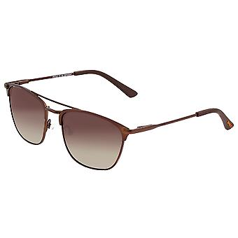 Raça Zodiac Titanium polarizada óculos de sol-Brown/Brown