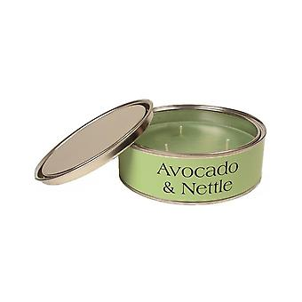 Pintail Candles Large 3 Wick Scented Candle Tin -  Avocado & Nettle