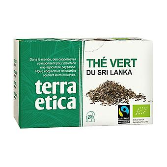 Green tea from Sri Lanka 20 infusion bags of 36g