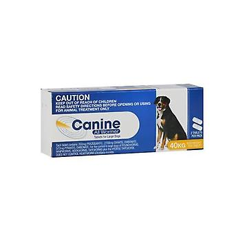 Canine Allwormer 40kg 2 pack