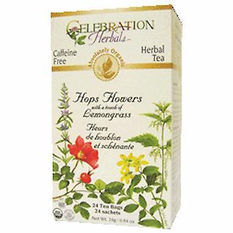 Celebration Herbals Organic Hops Flowers Tea, 24 Bags