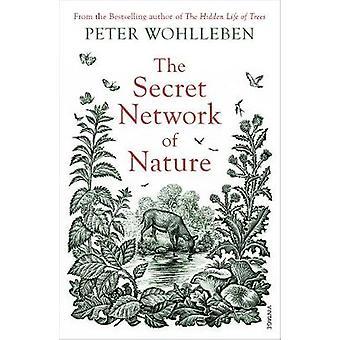 Het geheime netwerk van de natuur De delicate balans van alle levende wezens