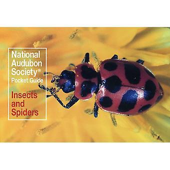 National Audubon Society Pocket Guide Insekter og edderkopper av National Audubon Society