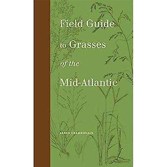Feltet Guide til gress for midtatlantiske