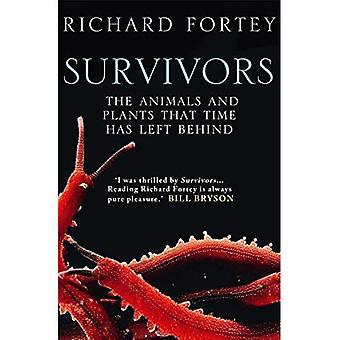 Überlebende: Die Tiere und Pflanzen, dass Zeit zurückgelassen hat