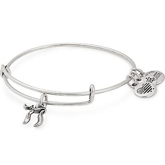 Alex and Ani Chai Charm Bangle - A18CHA101RS