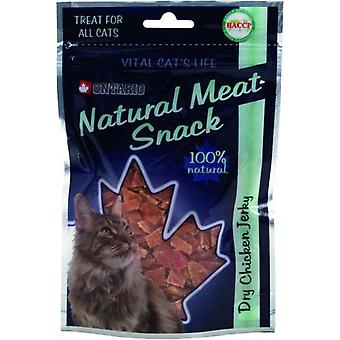 Ontario Chicken Dry Jerky Snack For Cat 70G (Cats , Treats , Eco Products)