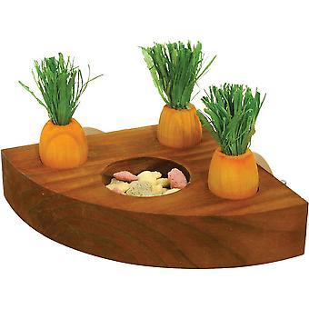 Rosewood ikävystyminen Breakers porkkana lelu ja hoitoon haltijan