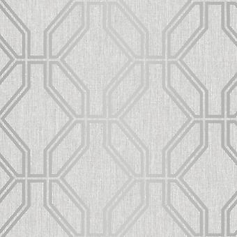 Highgrove Trellis Duplex Tapete grau / Silber Rasch 275277