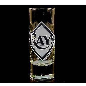 Tampa Bay Rays MLB