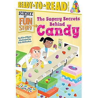 Die süßen Geheimnisse hinter Candy (Science of Fun Stuff)