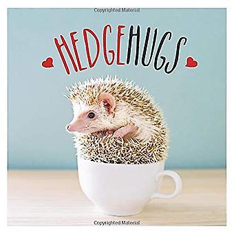 Hedgehugs - A Spike-Tacular Celebration of the World's Cutest Hedgehog