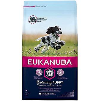Eukanuba Groeiende Puppy Medium Breed Chicken - 2kg