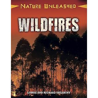 Wildfires by Louise Spilsbury - Richard Spilsbury - 9781445153995 Book