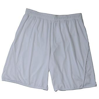 James en Nicholson Childrens/Kids Team Shorts