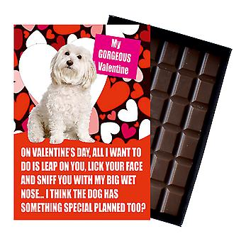 Bichon Frise Gift for Valentines Day Presents For Dog Lovers Boxed Chocolate