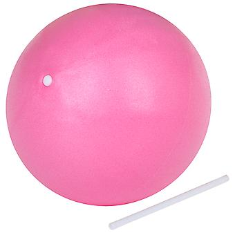 Pink Workout Exercise Gym Ball  - By TRIXES