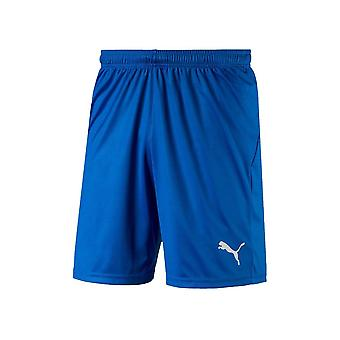 Puma Liga Shorts Core 70343602 training hele jaar heren broek