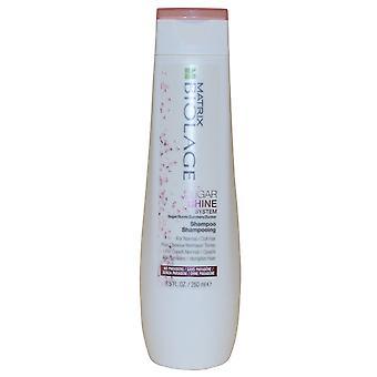 Matrix Biolage Sugar Shine Shampoo Sugarshine 250ml for Normal Dull Hair