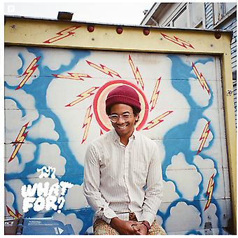 Toro Y Moi - What for [CD] USA import