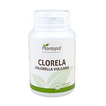 Chlorella 60 tablettia 435mg