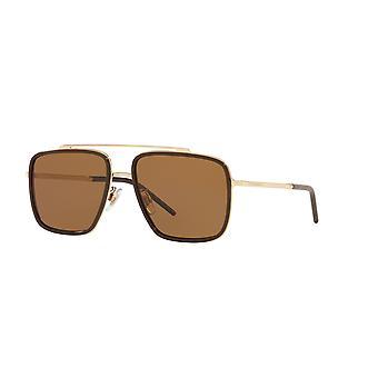 Dolce&Gabbana DG2220 488/83 Vaalea kullanruskea/Tummanruskea kaltevuus Aurinkolasit