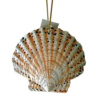 Tropical Beach Seashell Christmas Ornament Spotted ORNShell02 Resin