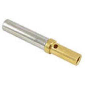 TE Connectivity 0462-201-1631 Bullet connector single contact Socket Series (connectors): DT 1 pc(s)