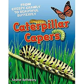 Caterpillar Capers: Age 5-6, Above Average Readers