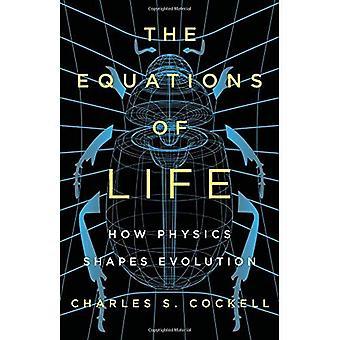 De vergelijkingen van het leven: hoe fysica evolutie vormen