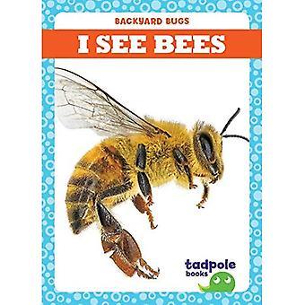I See Bees