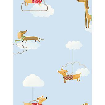 Walkies Sausage Dog Fond d'écran Holden