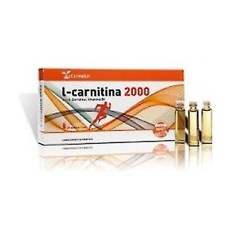 L-Carnitine 20 ampoules