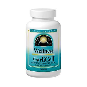 Kilde Naturals Wellness GarliCell, 6.000 mcg Allicin, 90 Tabs