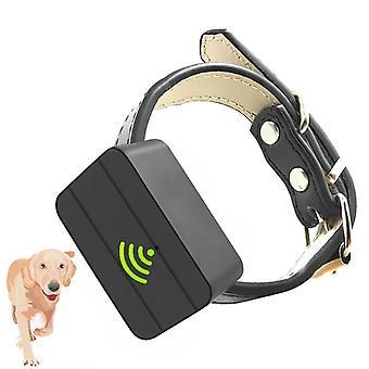 Hunde Haustier Mini GPS Tracker Locator Anti Diebstahl Tracker WIFI Für 7 Tage  GPS-Tracker
