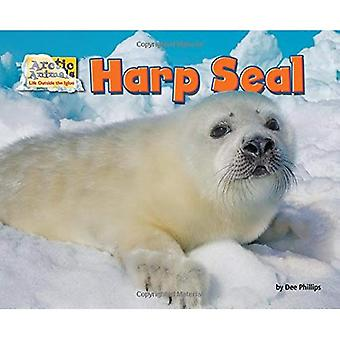 Harp Seal (Arctic Animals: Life Outside the Igloo)