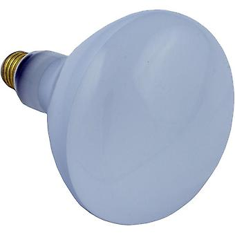 Halco R40FL400/HG 400W 115V Incandescent Flood Hard Glass Lamp Bulb