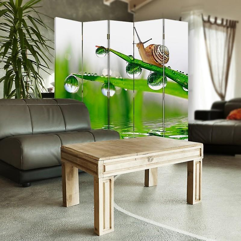 Diviseur de chambre, 5 panneaux, double-sided, 360 rotatable, toile, escargot sur l'herbe