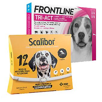 Frontline Tri Act Keskikokoinen Rotu + Scalibor