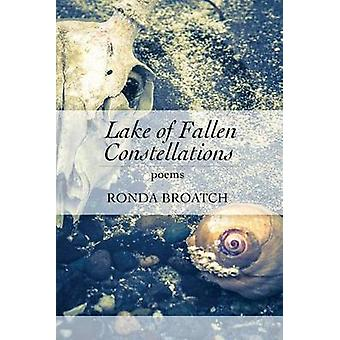 Lake of Fallen Constellations by Broatch & Ronda