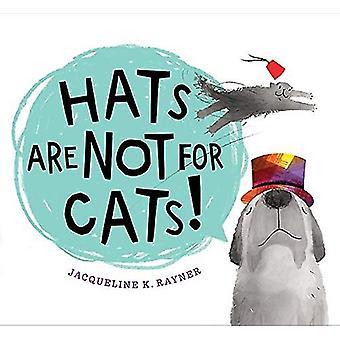 Hüte sind nicht für Katzen von -Jacqueline -K. Rayner - 9781328967190 Buch
