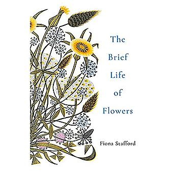 The Brief Life of Flowers by Fiona Stafford - 9781473686373 Book