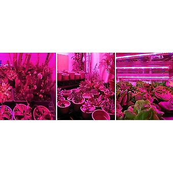 5m Led Grow Light Strip With Full Spectrum Uv   Waterproof Phyto Tape With Adapter And Switch For Greenhouse Grow Tent